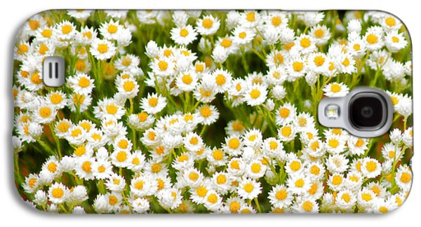Wildflowers Galaxy S4 Case by Holly Kempe