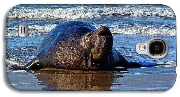Wildlife_d116 Galaxy S4 Case by Craig Lovell