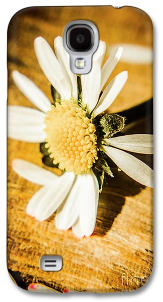 Daisy Galaxy S4 Case - Wilt by Jorgo Photography - Wall Art Gallery