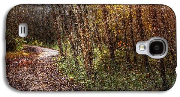 Winding Path Galaxy S4 Case
