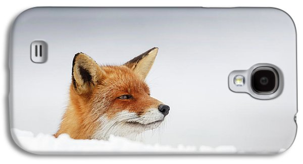 Winter Came - Red Fox In The Snow Galaxy S4 Case