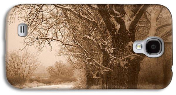 Winter Dream Galaxy S4 Case by Carol Groenen