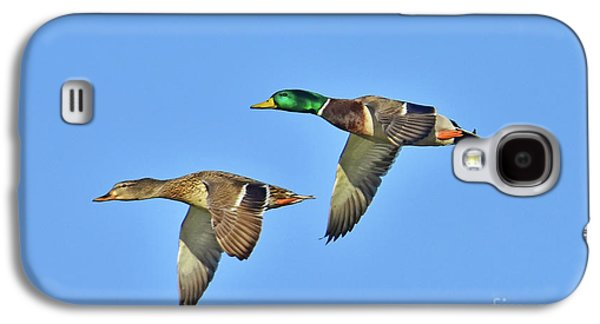 Winter Flight Galaxy S4 Case by Gary Walker