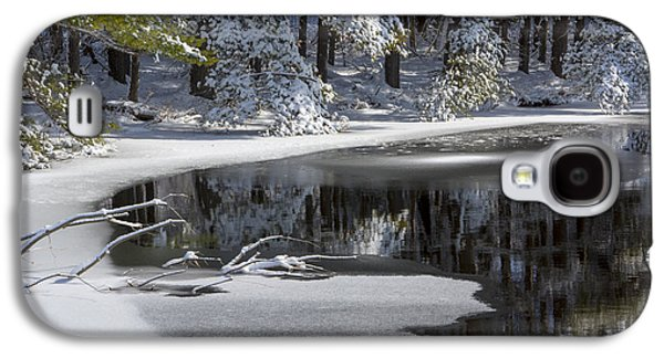 Winter Fresh Galaxy S4 Case by Karol Livote