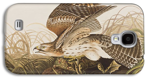 Winter Hawk Galaxy S4 Case by John James Audubon