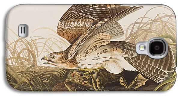 Winter Hawk Galaxy S4 Case by John James Audubon