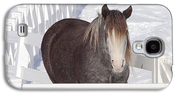 Winter Horse Galaxy S4 Case