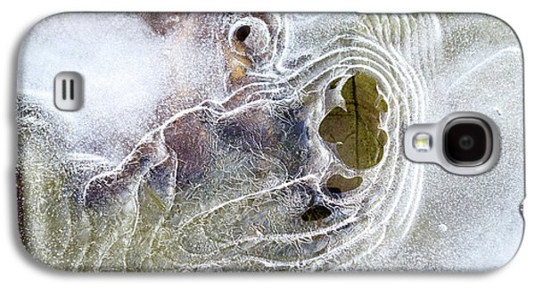 Winter Ice Galaxy S4 Case by Christina Rollo