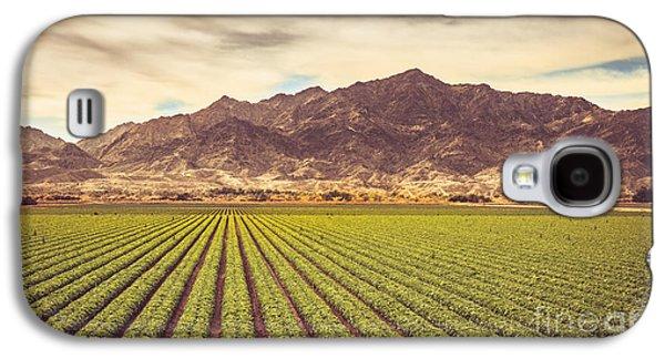 Winter Lettuce Galaxy S4 Case