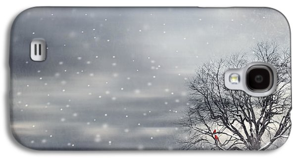 Winter Galaxy S4 Case by Lourry Legarde