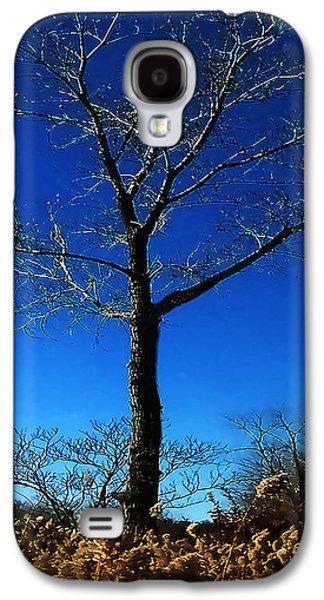 Winter Tree Galaxy S4 Case