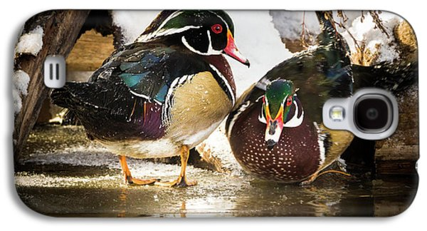 Winter Visitors - Wood Ducks Galaxy S4 Case