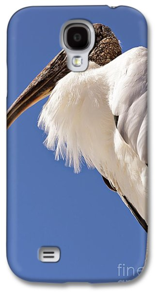 Wonderful Wood Stork Galaxy S4 Case by Carol Groenen