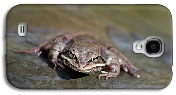 Wood Frog Close Up Galaxy S4 Case by Christina Rollo