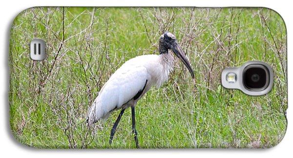 Wood Stork In The Marsh Galaxy S4 Case by Carol Groenen