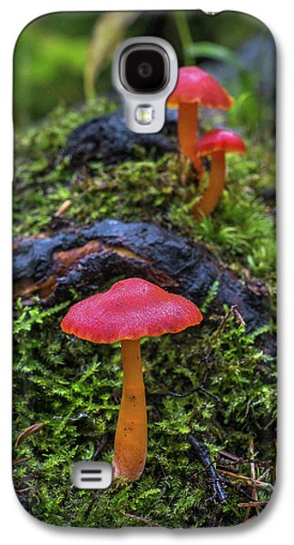 Galaxy S4 Case featuring the photograph Woodland Floor Decor by Bill Pevlor