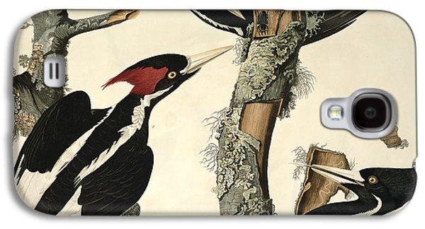 Woodpecker Galaxy S4 Case by John James Audubon