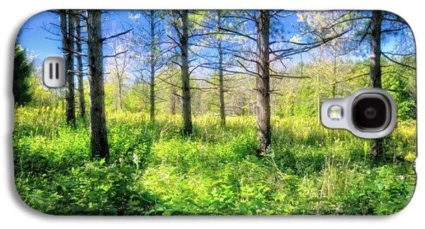 Woods Of Retzer Nature Center Galaxy S4 Case