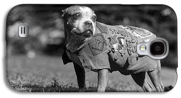 Wwi, Sergeant Stubby, American War Dog Galaxy S4 Case by Science Source