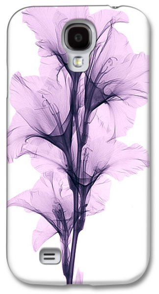 X-ray Of A Gladiola Flower Galaxy S4 Case