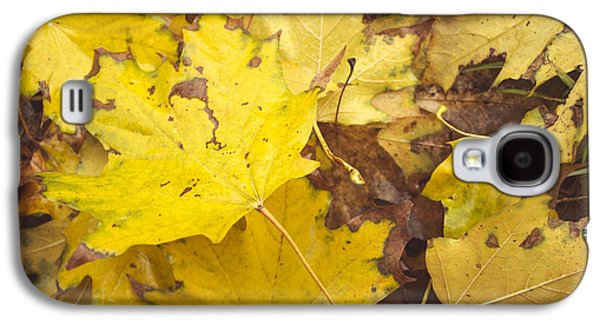 Yellow Autumn Leaves Galaxy S4 Case by Thubakabra