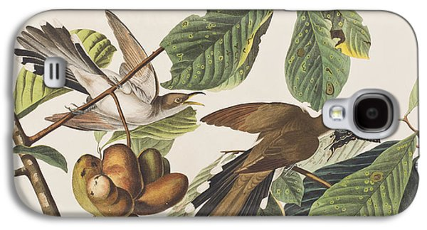 Yellow Billed Cuckoo Galaxy S4 Case by John James Audubon