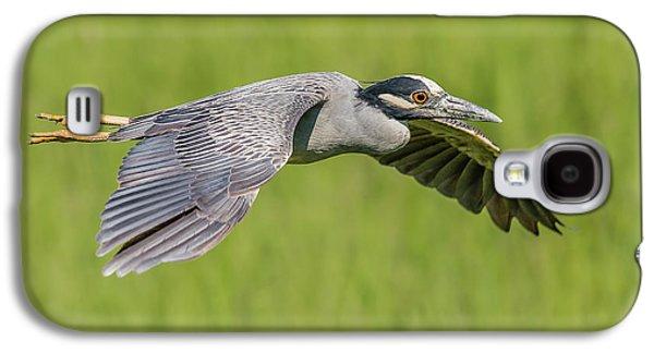 Yellow-crowned Night-heron In Flight Galaxy S4 Case