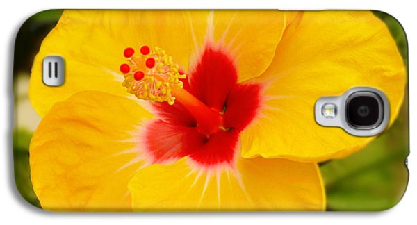 Yellow Hibiscus Galaxy S4 Case by Mike McGlothlen