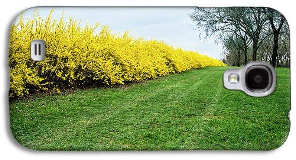 Yellow Flowers Galaxy S4 Case
