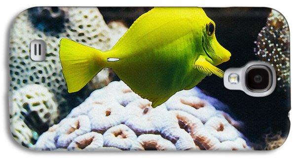 Yellow Tang Fish Galaxy S4 Case