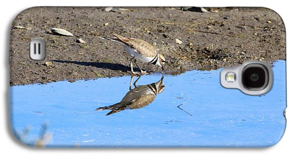 Killdeer Galaxy S4 Case - You Look Familiar  by Karen Silvestri