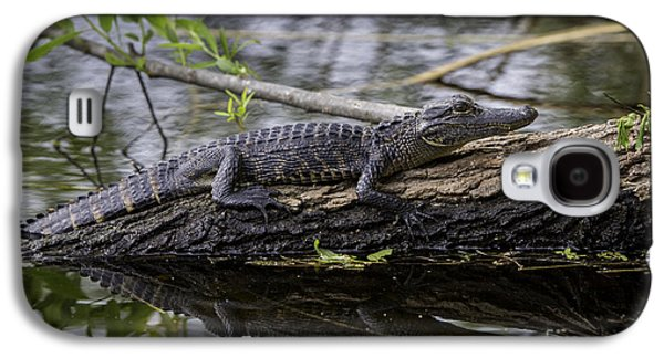 Young Alligator Galaxy S4 Case