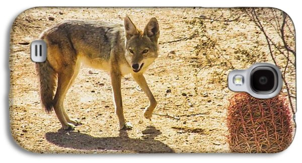 Young Coyote And Cactus Galaxy S4 Case