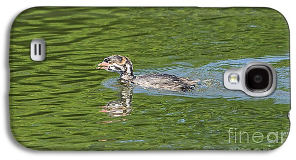 Young Grebe Galaxy S4 Case