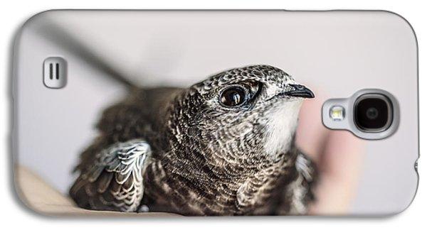 Young Swift Galaxy S4 Case by Nailia Schwarz