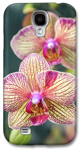 Galaxy S4 Case featuring the photograph You're So Vain by Bill Pevlor