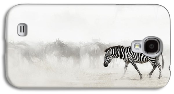 Zebra In Dust Of Africa Galaxy S4 Case