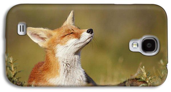 Zen Fox Series - Summer Fox Galaxy S4 Case by Roeselien Raimond