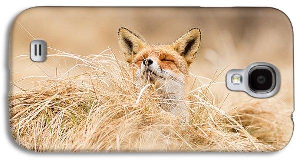 Zen Fox Series - Zen Fox 2.7 Galaxy S4 Case