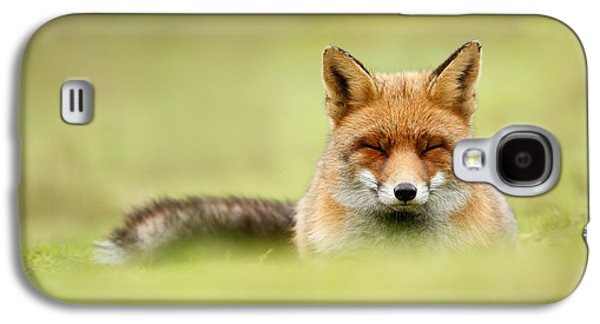Zen Fox Series - Zen Fox In A Sea Of Green Galaxy S4 Case by Roeselien Raimond