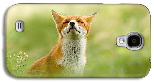 Zen Fox Series - Zen Fox Does It Agian Galaxy S4 Case by Roeselien Raimond