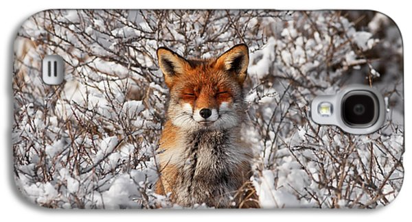Zen Fox Series - Zen Fox In The Snow Galaxy S4 Case