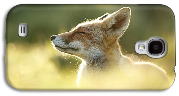 Zen Fox Series - Zen Fox Up Close Galaxy S4 Case by Roeselien Raimond