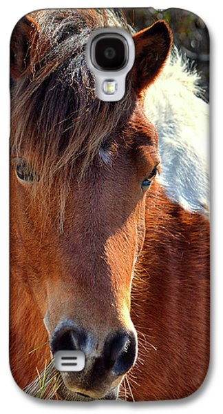 Galaxy S4 Case featuring the photograph Assateague Pinto Mare Ms Macky by Bill Swartwout Fine Art Photography