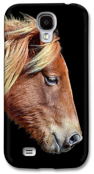 Galaxy S4 Case featuring the photograph Assateague Pony Sarah's Sweet Tea On Black Square by Bill Swartwout Fine Art Photography
