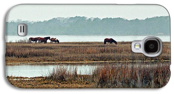 Galaxy S4 Case featuring the photograph Band Of Wild Horses At Sinepuxent Bay by Bill Swartwout Fine Art Photography