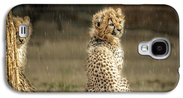 Cheetah Cubs And Rain 0168 Galaxy S4 Case