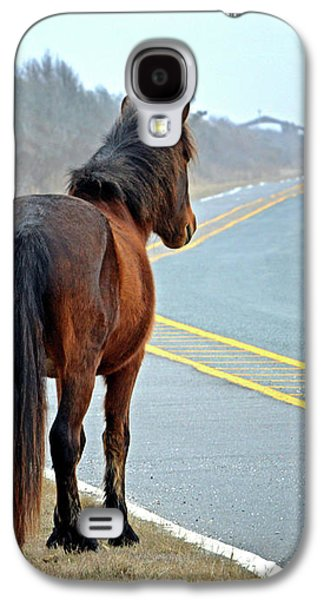 Galaxy S4 Case featuring the photograph Delegate's Pride Awaiting Tourists On Assateague Island by Bill Swartwout Fine Art Photography