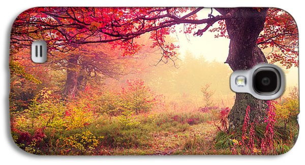 Travel Galaxy S4 Case - Majestic Landscape With Autumn Trees In by Creative Travel Projects