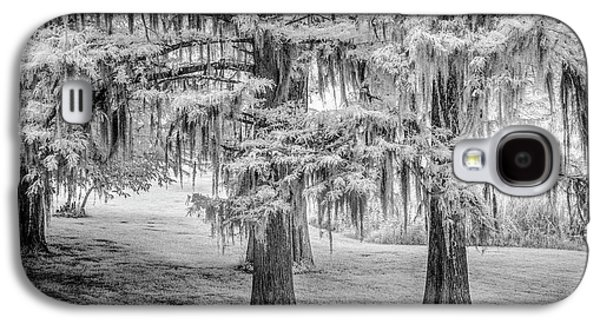 Moss Laden Trees 4132 Galaxy S4 Case